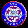 Vnykovo-2004Фотография %s